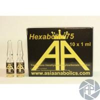 Hexabolic 75 (Asia Anabolics) 75mg/ml