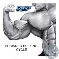 BEGINNER BULKING CYCLE