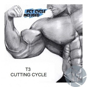 T3 CUTTING CYCLE