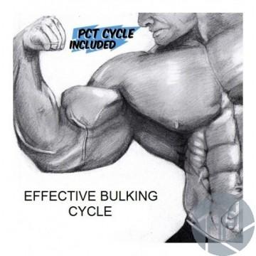 EFFECTIVE BULKING CYCLE