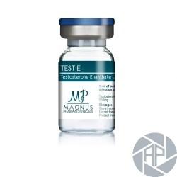 TEST E - Testosterone enanthate U.S.P. 250mg - Magnus