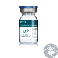 TEST P - Testosterone propionate U.S.P. 100mg - Magnus