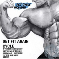GET FIT AGAIN CYCLE