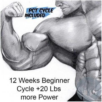12 WEEKS BEGINNER CYCLE, +20 LBS AND MORE POWER